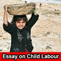 Essay on Child Labour in English
