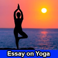 Essay on Yoga in English