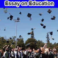 Essay on Education in English