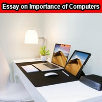 Essay on Importance of Computers in English