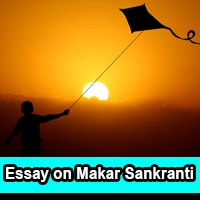 Essay on Makar Sankranti in English