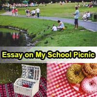 Essay on My School Picnic in English