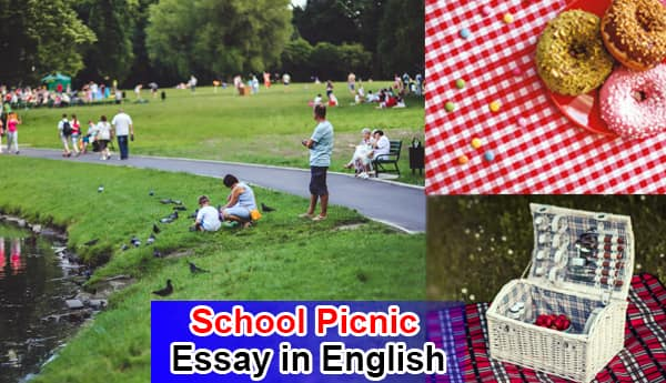 Essay on My School Picnic