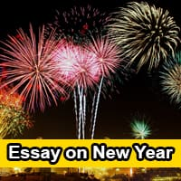 Essay on New Year in English