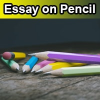 Essay on Pencil in English