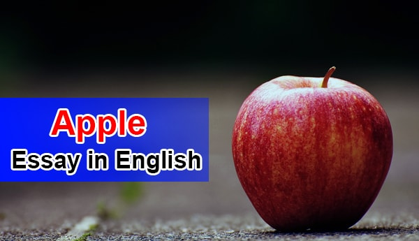 Essay on Apple