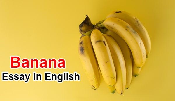 Essay on Banana
