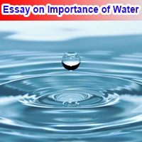 Essay on Importance of Water in English