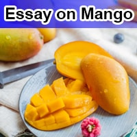 Essay on Mango in English