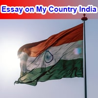 Essay on My Country in English