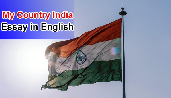Essay on My Country