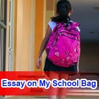 Essay on My School Bag in English