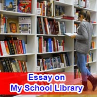 Essay on My School Library in English