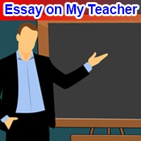Essay on My Teacher in English