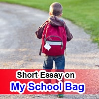 ShShort 10 Line Essay on My School Bag in Englishort 10 Line Essay on My School Bag in English