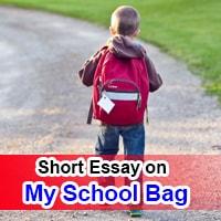 ShShort 10 Line Essay on My School Bag in Englishort 10 Line Essay on My School Bag in English