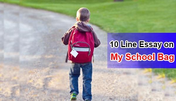 Short 10 Line Essay on My School Bag