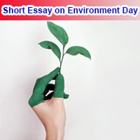 Short Essay on Environment Day in English