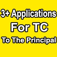 TC Application For School Format in English
